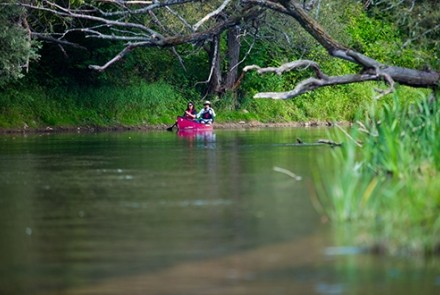 paddlers on beaver river