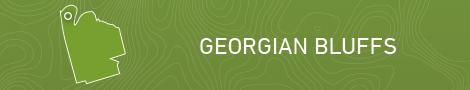 Georgian Bluff Locator map