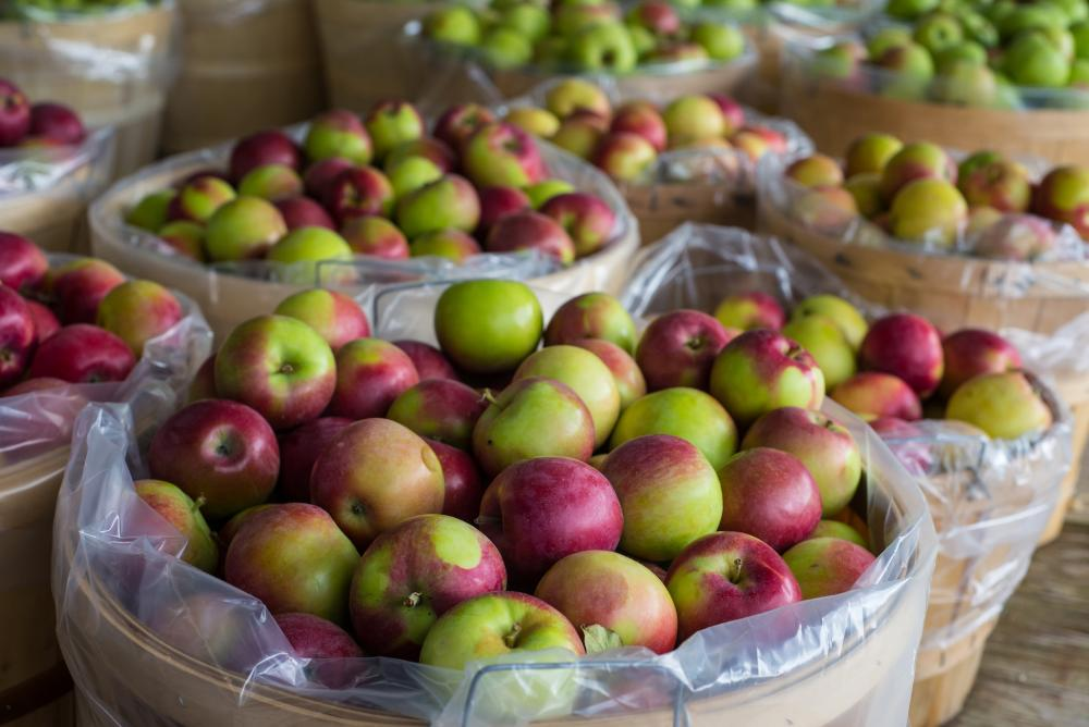 Meaford Apples