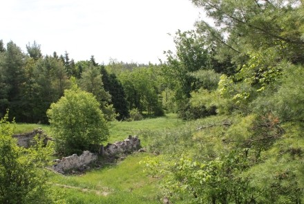 A beautiful property, east of the Town of Chesley