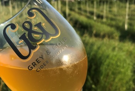 grey & Gold cider