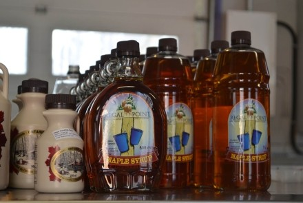 Maple Syrup at Regal Point