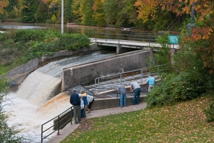 Owen Sound mill dam and fish ladder