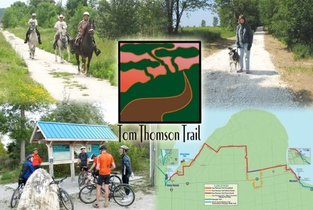 Tom Thomson Trail