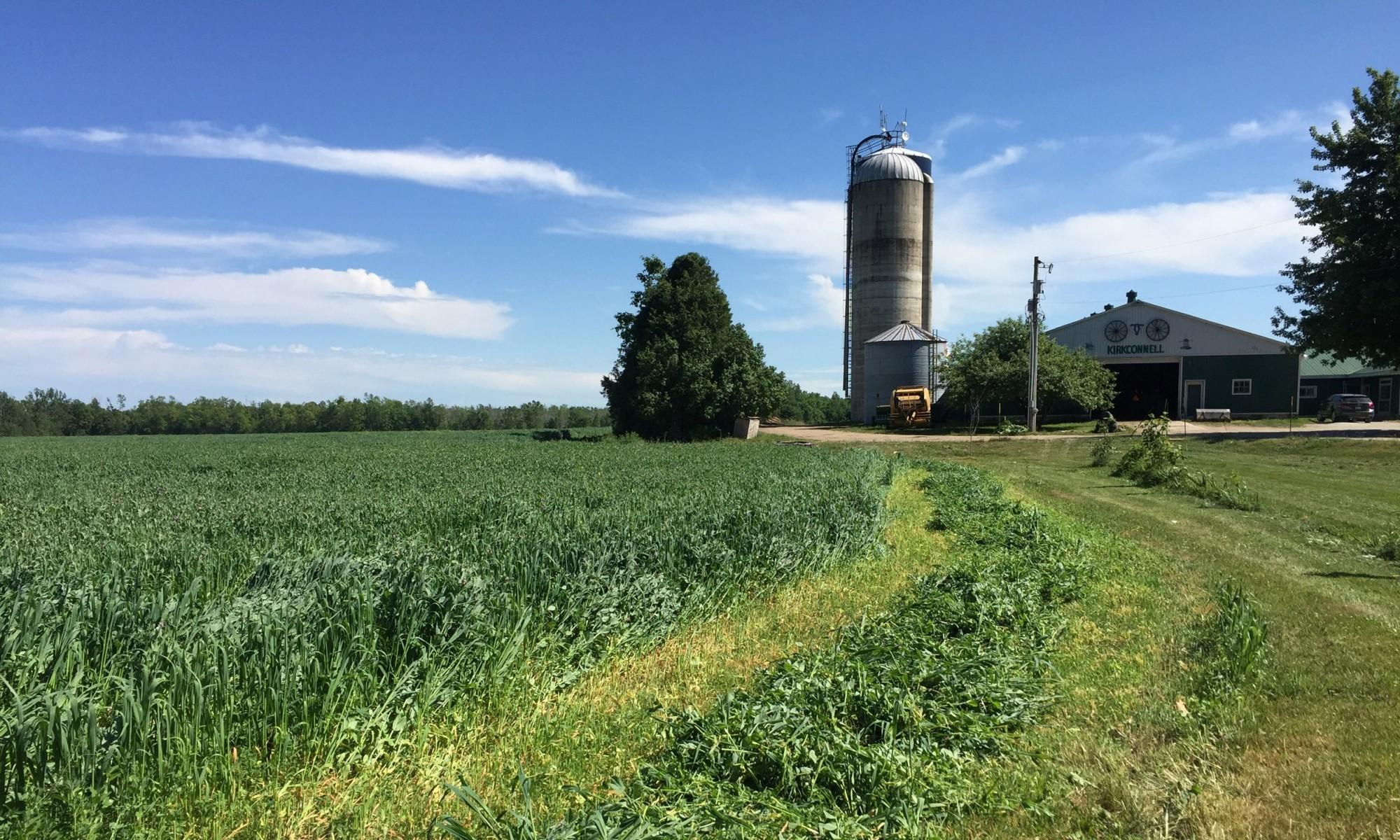 Valleykirk Farms
