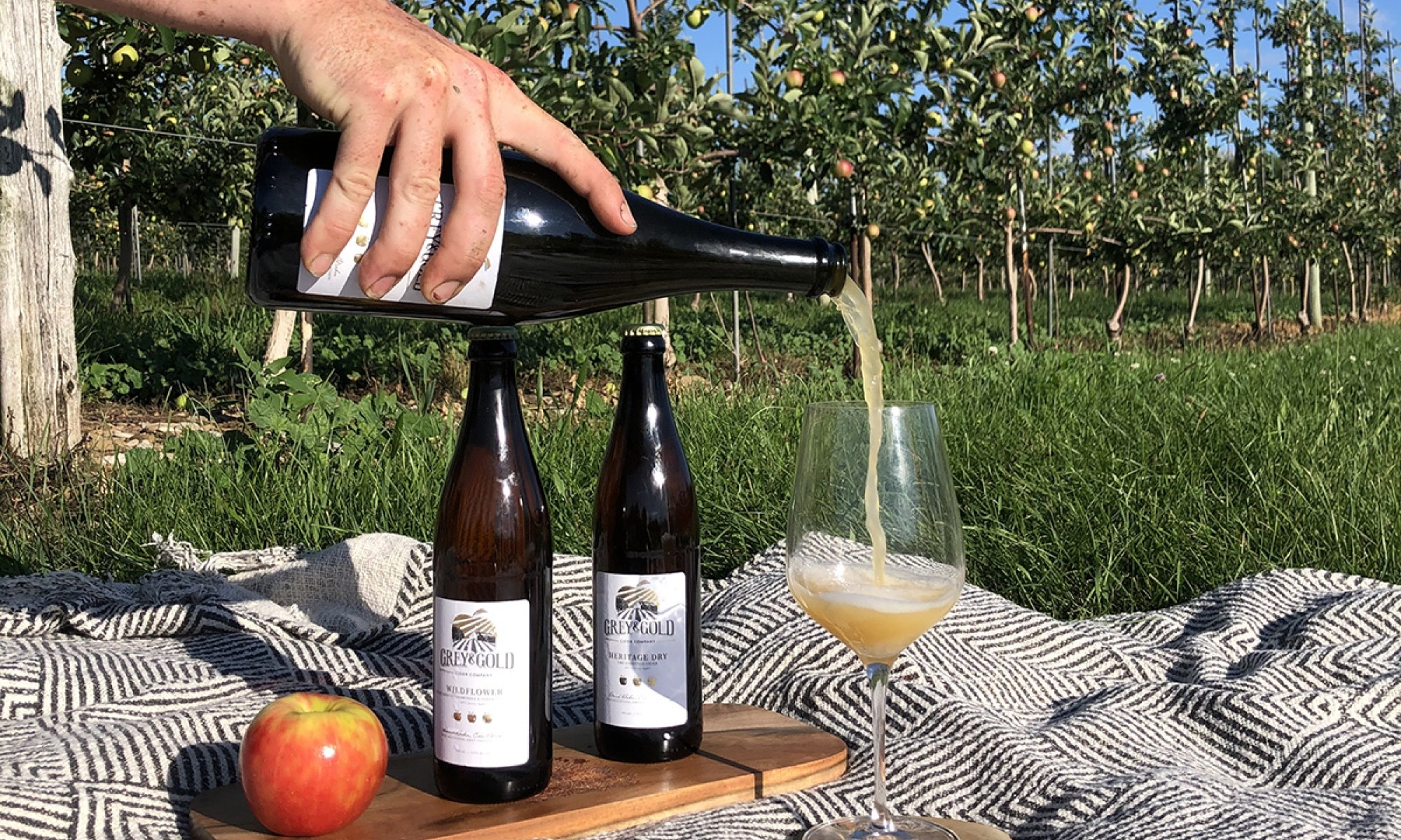 Grey and Gold Cider