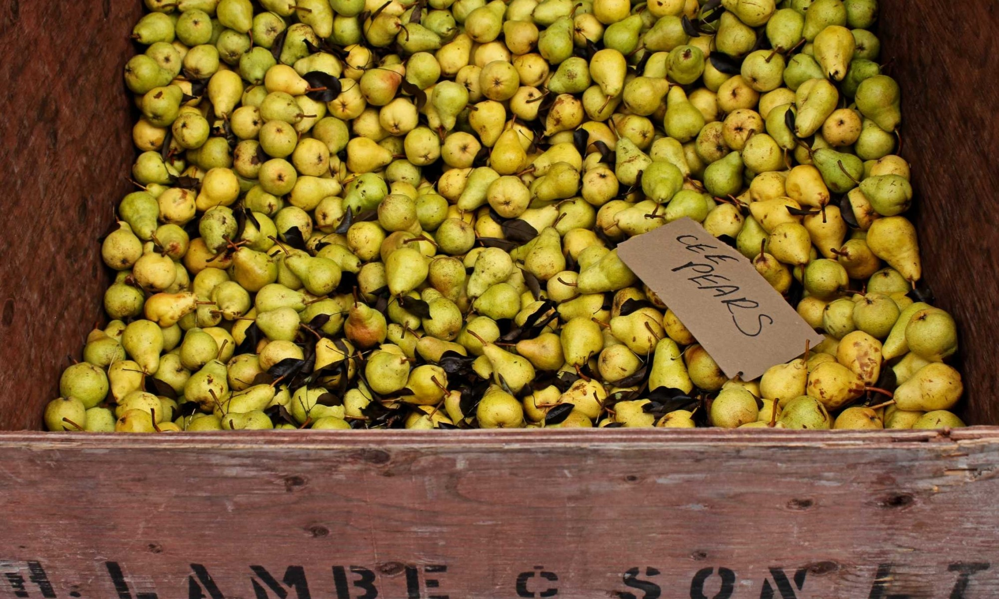 Crate of pears