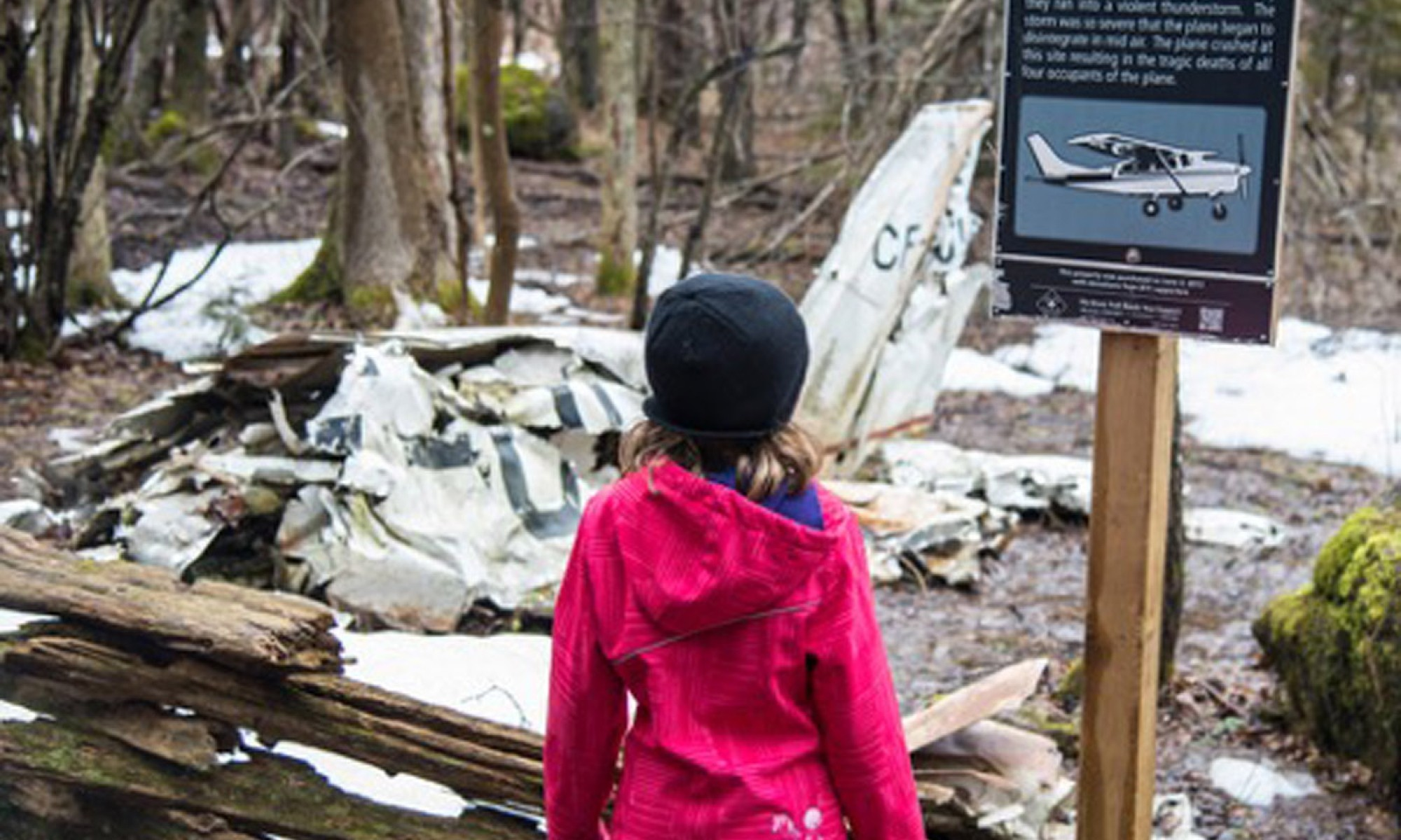 Airplane crash at Silent Valley Nature Reserve