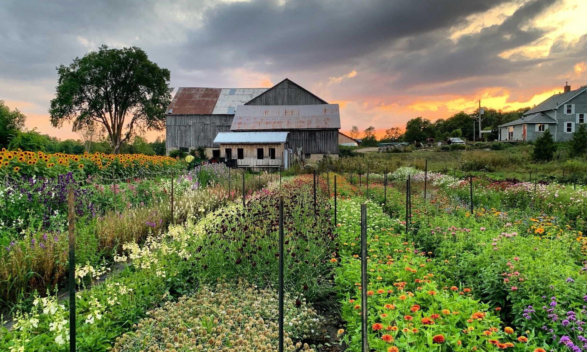 Sideroad Farm